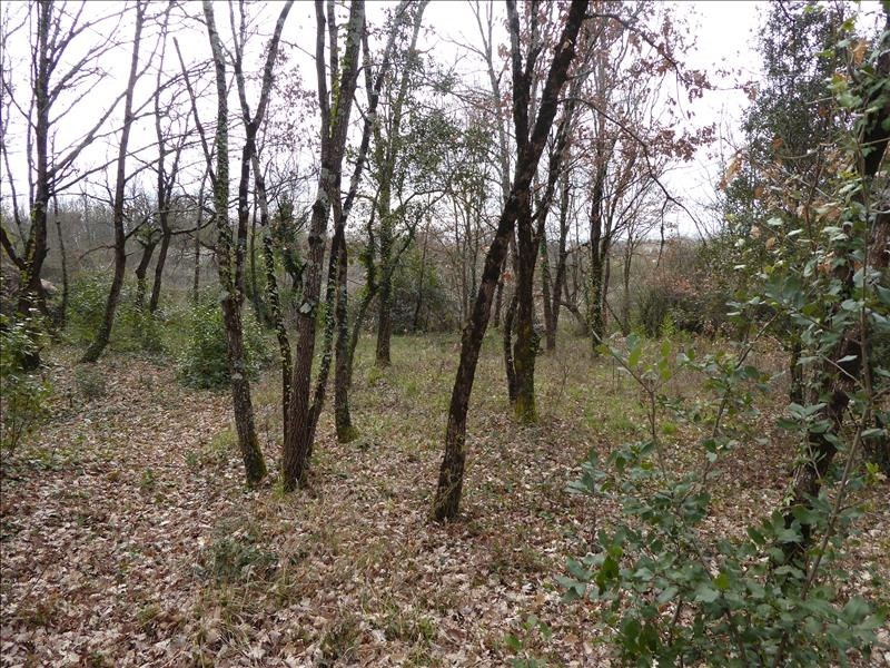 Vente terrain Montauban-est 71000€ - Photo 1