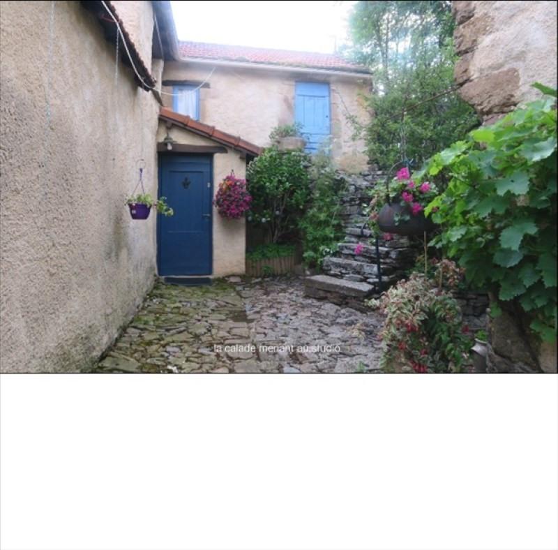 Vente maison / villa St sernin sur rance 450000€ - Photo 4