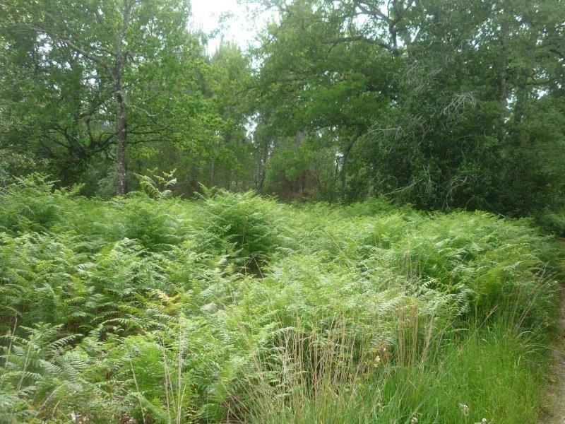 Vente terrain Gastes 126000€ - Photo 3