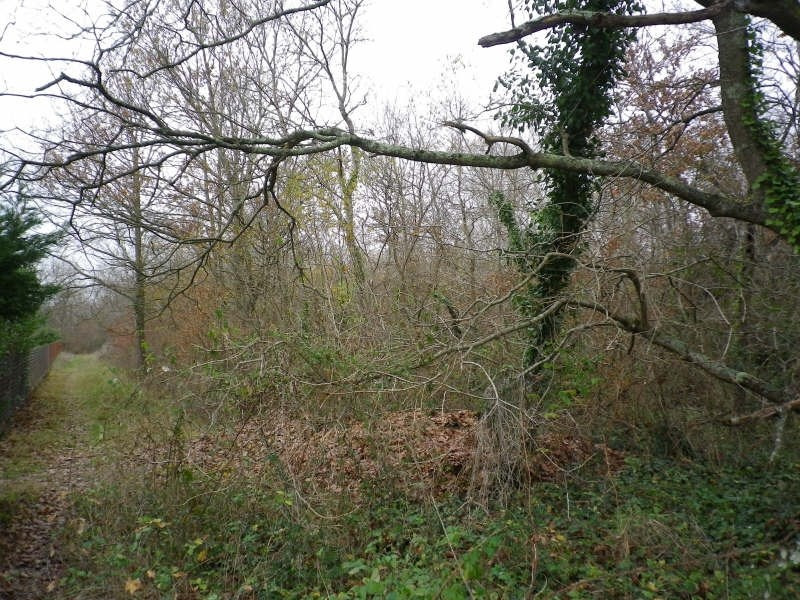 Vente terrain St sulpice et cameyrac 195000€ - Photo 3