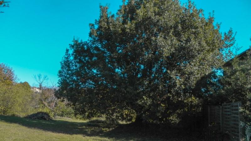 Vente terrain St etienne de fontbellon 83000€ - Photo 2