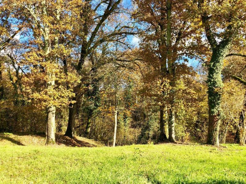 Vente terrain Pontonx sur l adour 65000€ - Photo 1