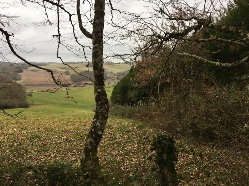 Vente terrain Coursac 30000€ - Photo 2