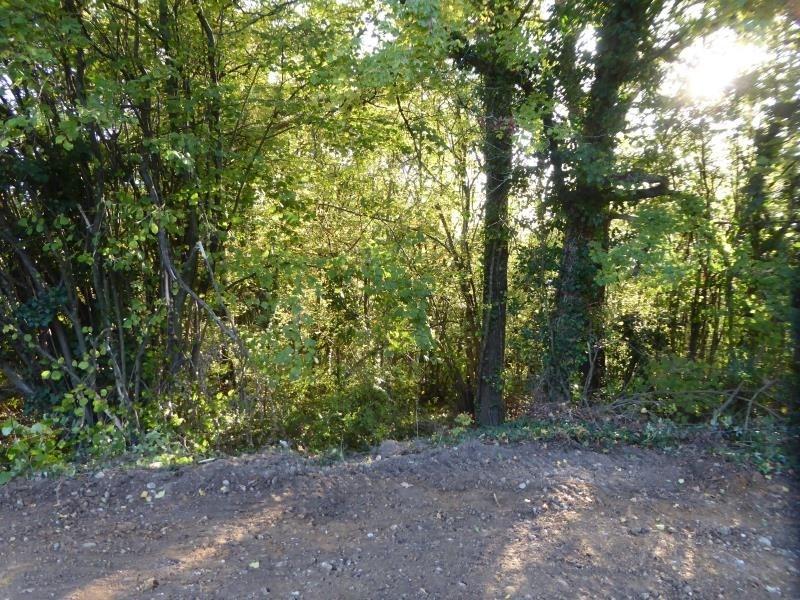 Vente terrain St georges d'esperanche 70000€ - Photo 3