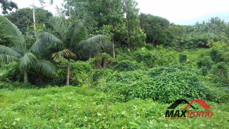 Vente terrain St philippe 245000€ - Photo 1