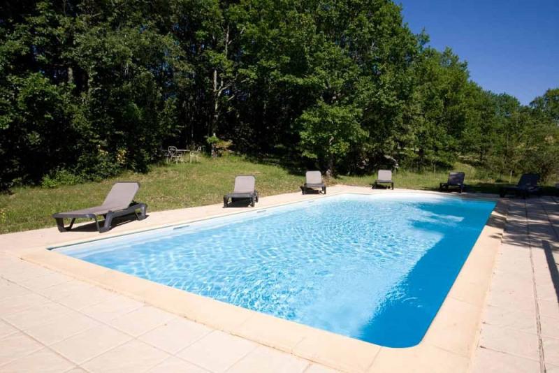 Vente maison / villa Daglan 349800€ - Photo 14