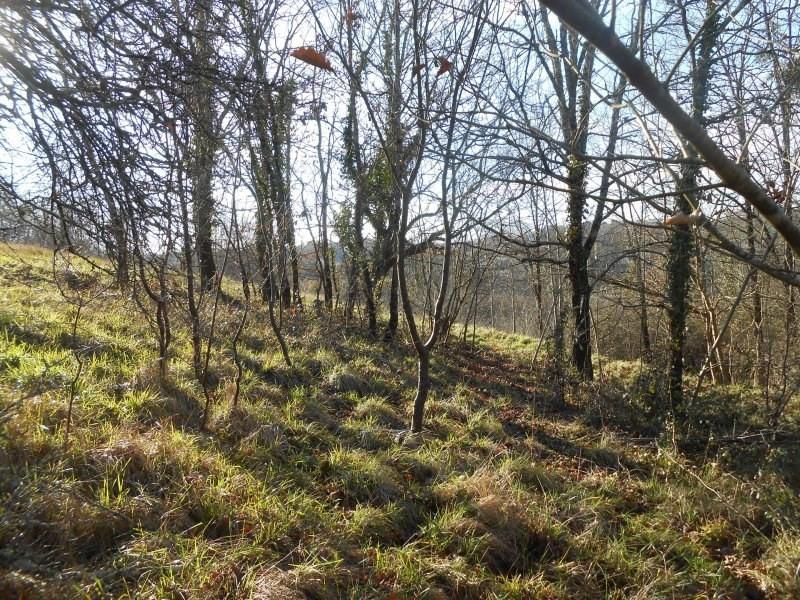 Vente terrain Montguyon 55000€ - Photo 4