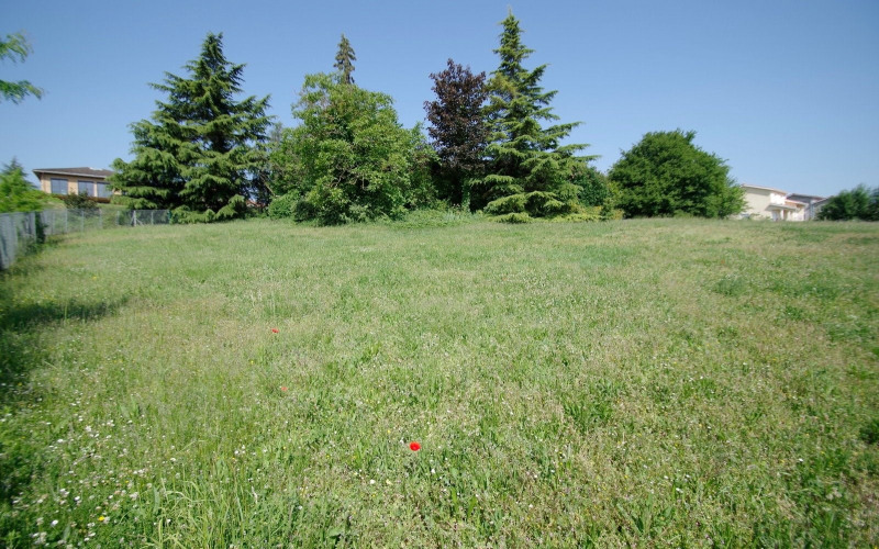 Vente terrain Anse 130000€ - Photo 4