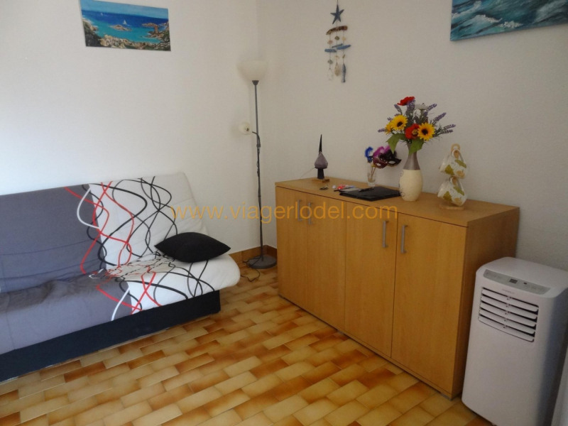 Viager appartement Agde 38 000€ - Photo 3