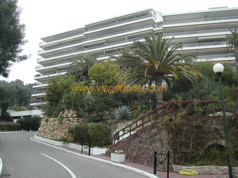 Viager appartement Golfe-juan 230 000€ - Photo 14