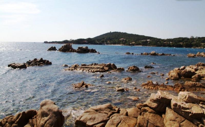 Location vacances maison / villa Pietrosella 850€ - Photo 4
