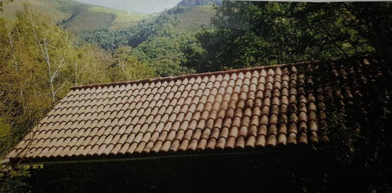 Vente maison / villa St jean pied de port 119000€ - Photo 3