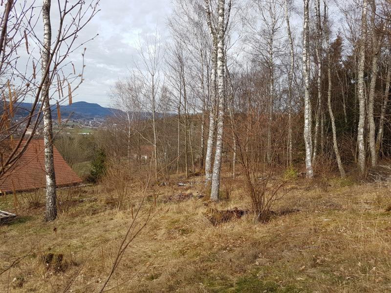 Vente terrain Anould 33000€ - Photo 3