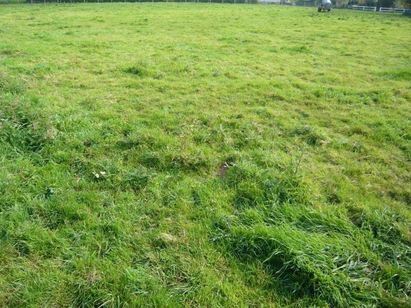 Vendita terreno Fauville en caux 57000€ - Fotografia 2