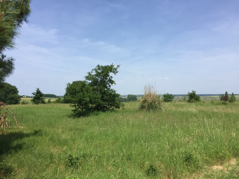 Vente terrain Saint augustin 117 080€ - Photo 1