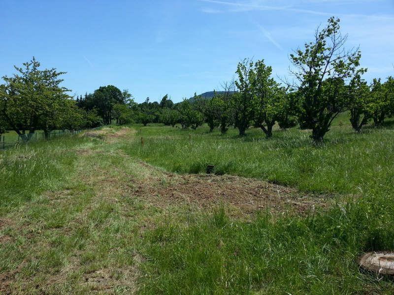 Vente terrain Alissas 105000€ - Photo 2