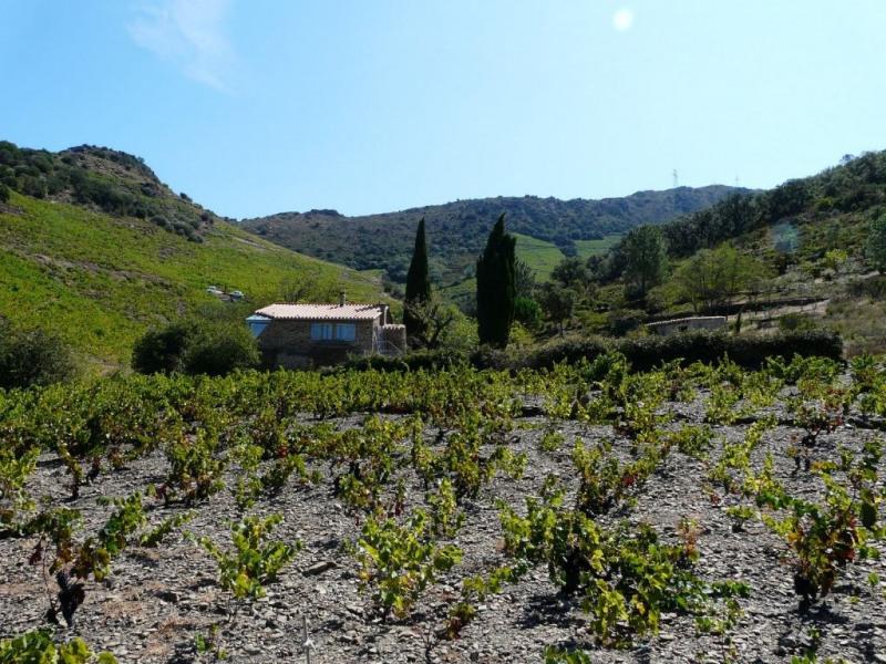 Vente maison / villa Banyuls sur mer 497000€ - Photo 9
