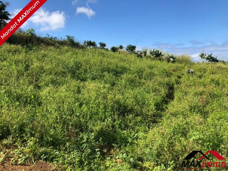 Vente terrain Manapany les hauts 104000€ - Photo 1