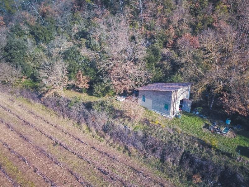 Sale house / villa Bras 78000€ - Picture 2