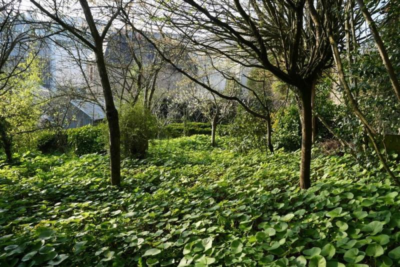 Vente terrain Coutances 45000€ - Photo 6