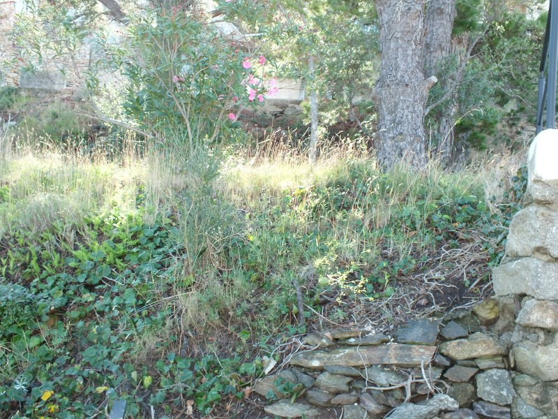 Sale site Puigrom 148000€ - Picture 6