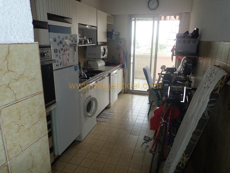 Lijfrente