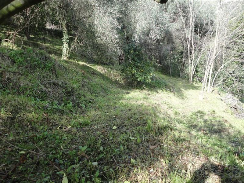 Vente terrain Ste agnes 250000€ - Photo 5