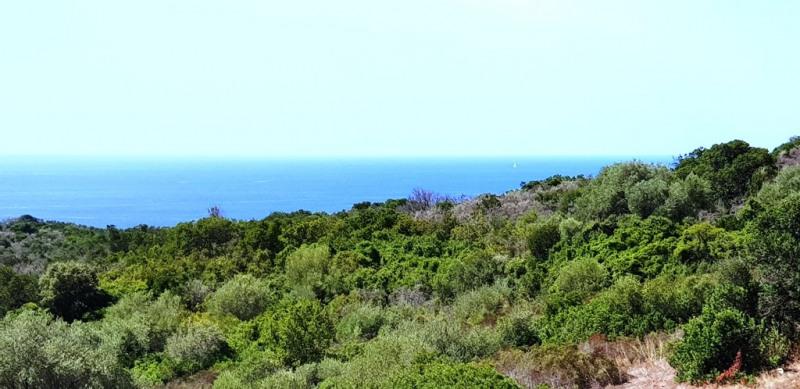 Vente terrain Pietrosella 155000€ - Photo 3