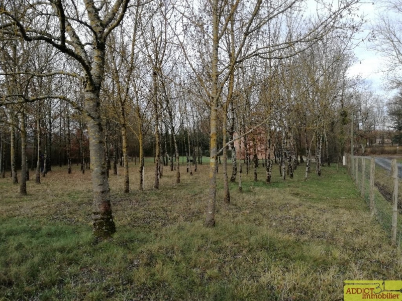 Vente terrain Damiatte 68 500€ - Photo 4