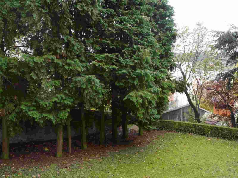 Vente appartement Saint-etienne 49900€ - Photo 3