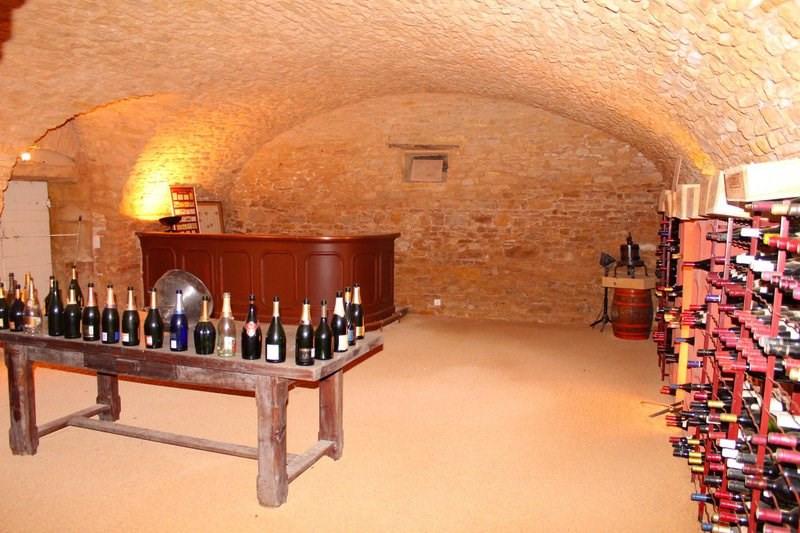 Deluxe sale house / villa Cogny 740000€ - Picture 5