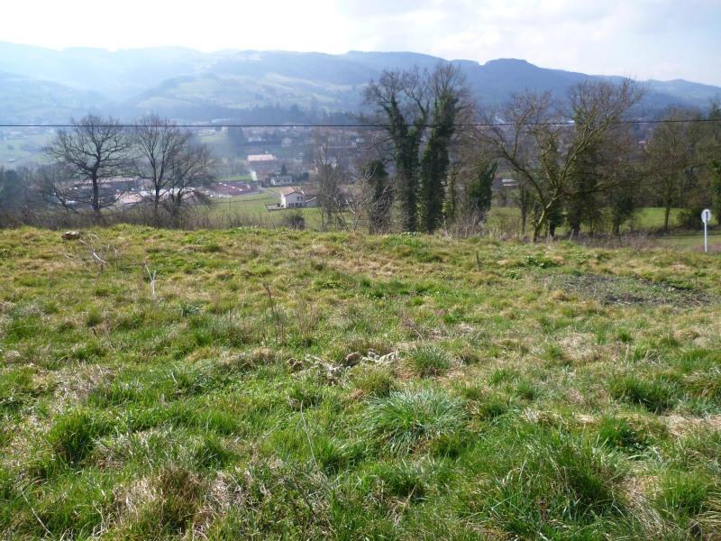 Vente terrain Ste foy l argentiere 70000€ - Photo 2