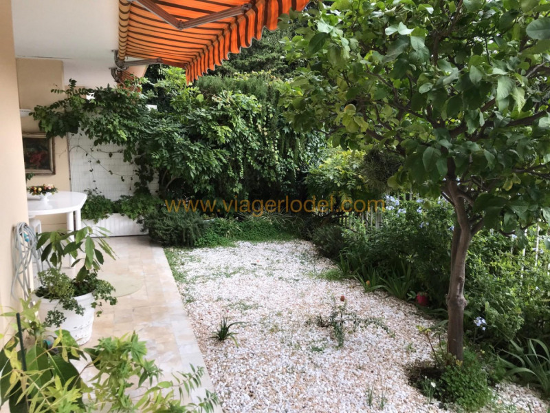 Viager appartement Nice 149 900€ - Photo 2