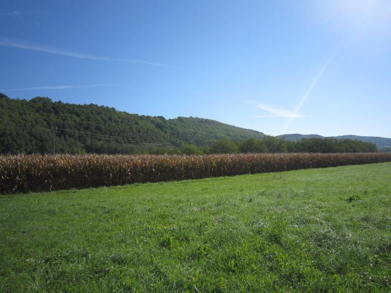 Vente terrain Castels 28600€ - Photo 3