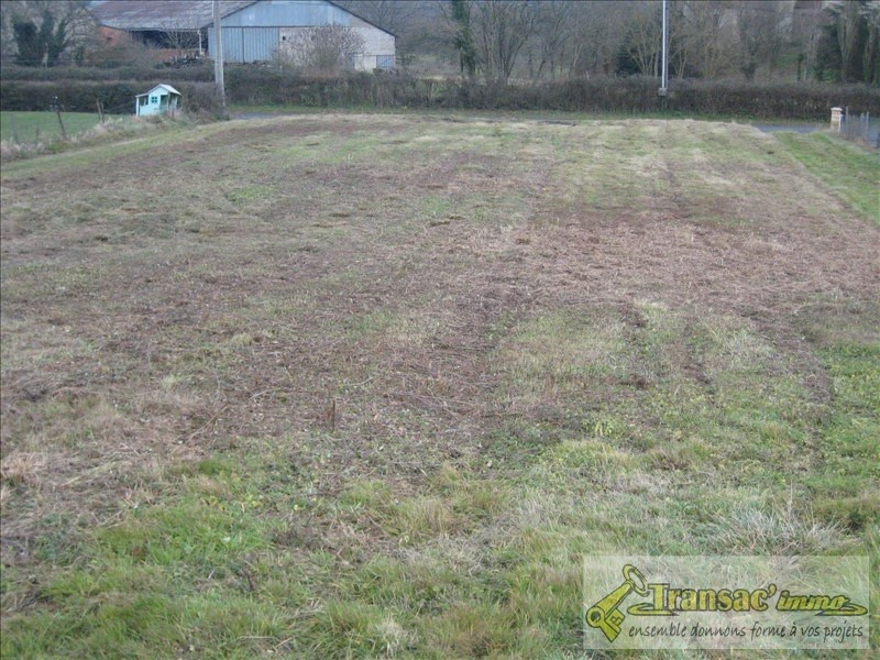 Vente terrain Randan 33 000€ - Photo 2