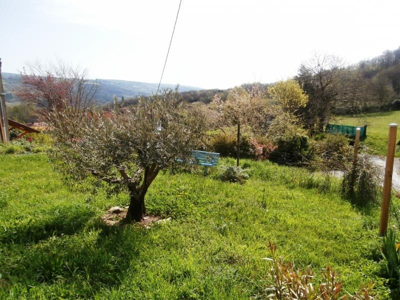 Vente maison / villa Mazamet 60000€ - Photo 10