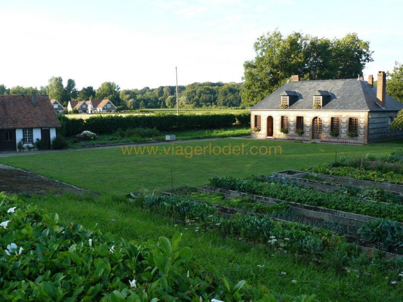 Viager maison / villa Longueil 175 000€ - Photo 13