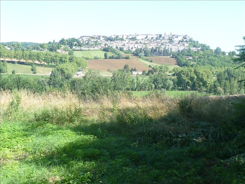Deluxe sale house / villa Montaigu de quercy 499 000€ - Picture 6