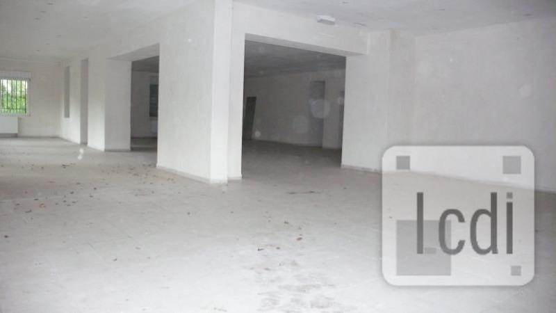 Vente local commercial Ottersthal 450 000€ - Photo 1