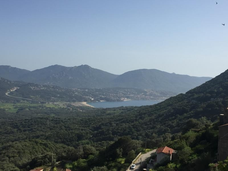 Rental house / villa Olmeto 1 200€ CC - Picture 3
