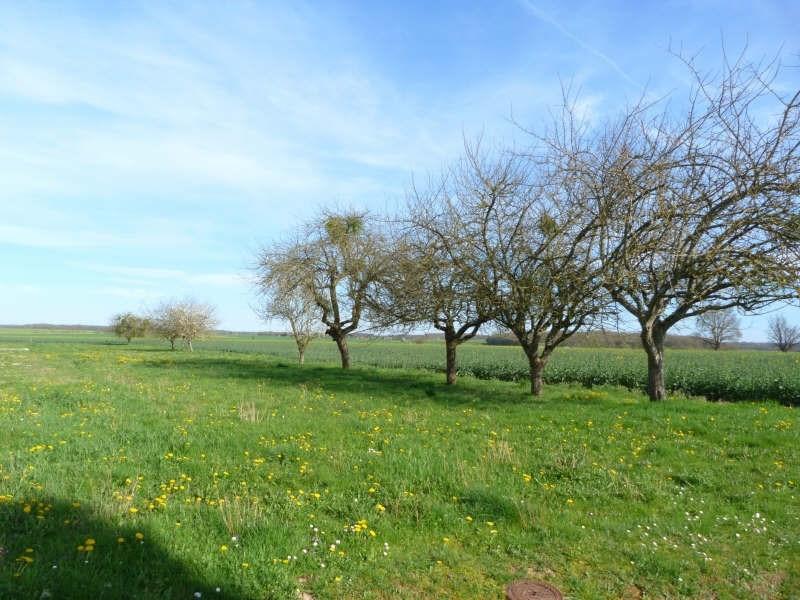 Sale site Charny oree de puisaye 30000€ - Picture 1