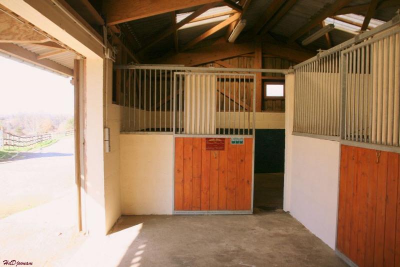 Deluxe sale house / villa Lisieux 819000€ - Picture 6
