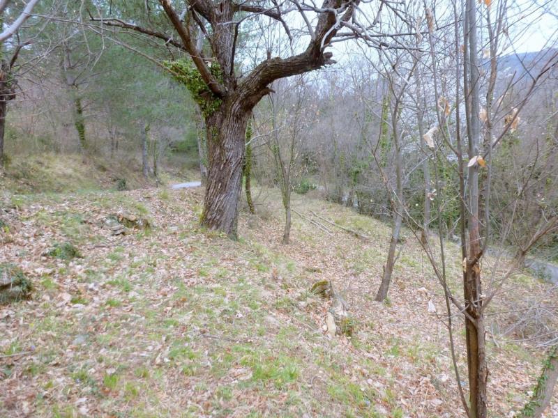 Vente terrain Aubenas 34000€ - Photo 6