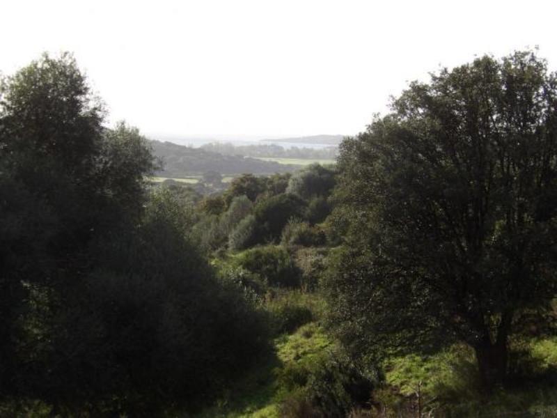 Vente terrain Sollacaro 575000€ - Photo 10
