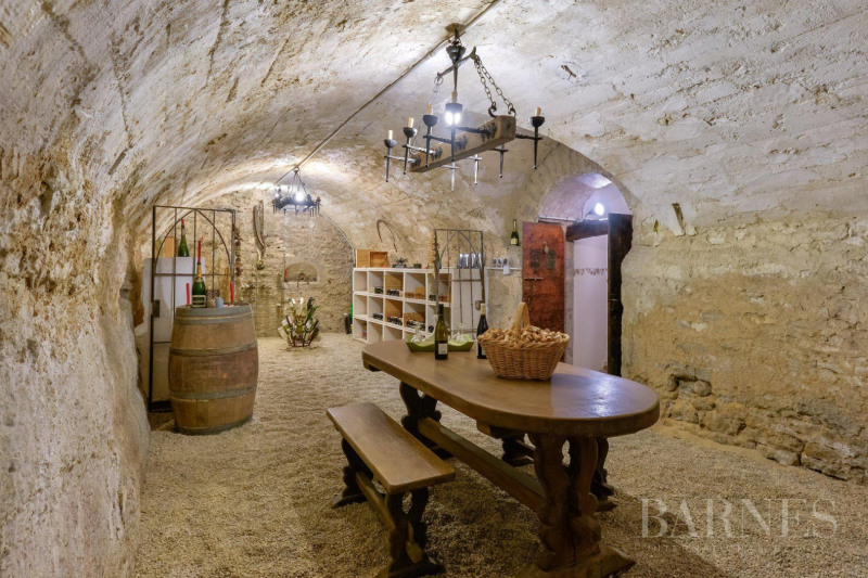 Deluxe sale house / villa Saint-didier-au-mont-d'or 1095000€ - Picture 9