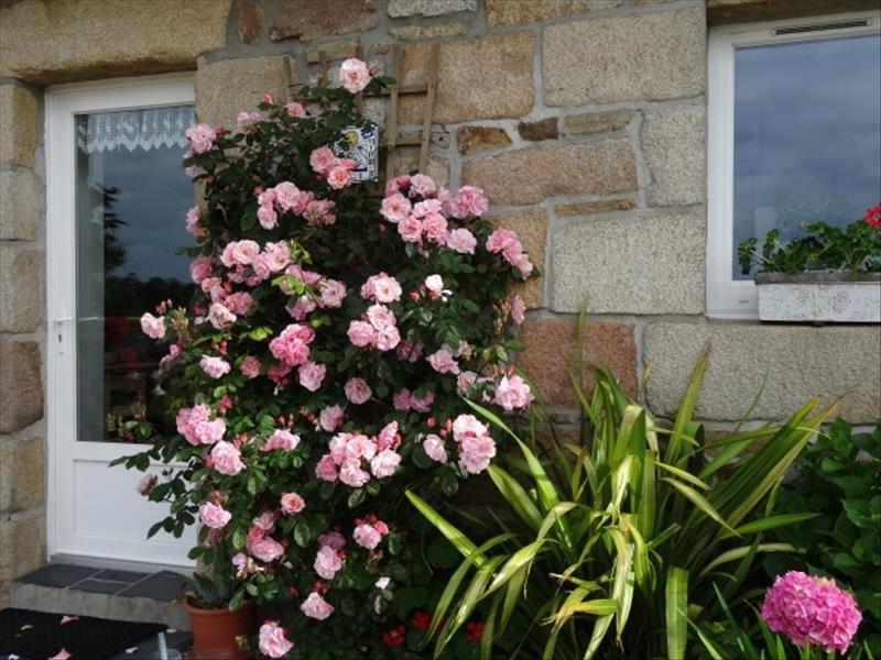 Sale house / villa Pleumeur bodou 260625€ - Picture 4