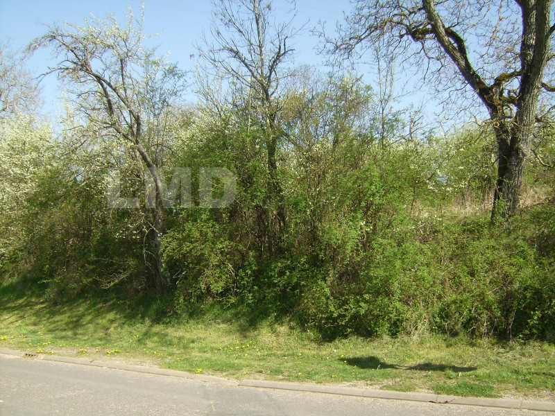 Vente terrain Vandeleville 29000€ - Photo 3
