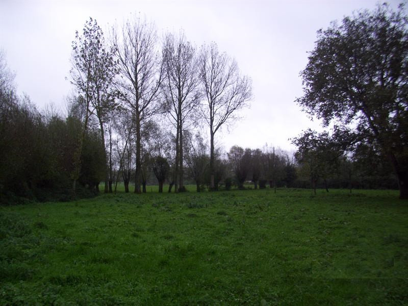 Sale site Axe therouanne fauquembergues 33500€ - Picture 1