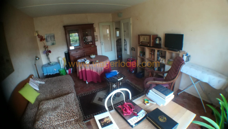 Viager appartement Toulouse 52500€ - Photo 4