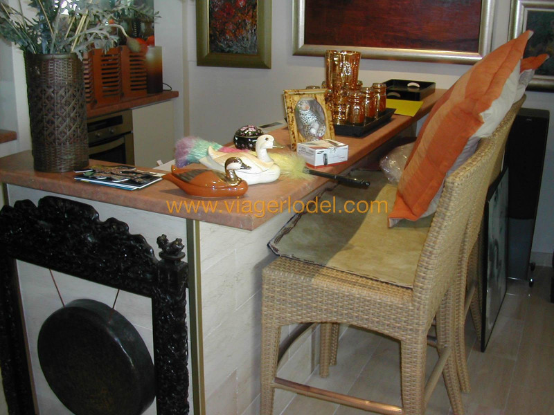 Viager appartement Golfe-juan 230 000€ - Photo 13